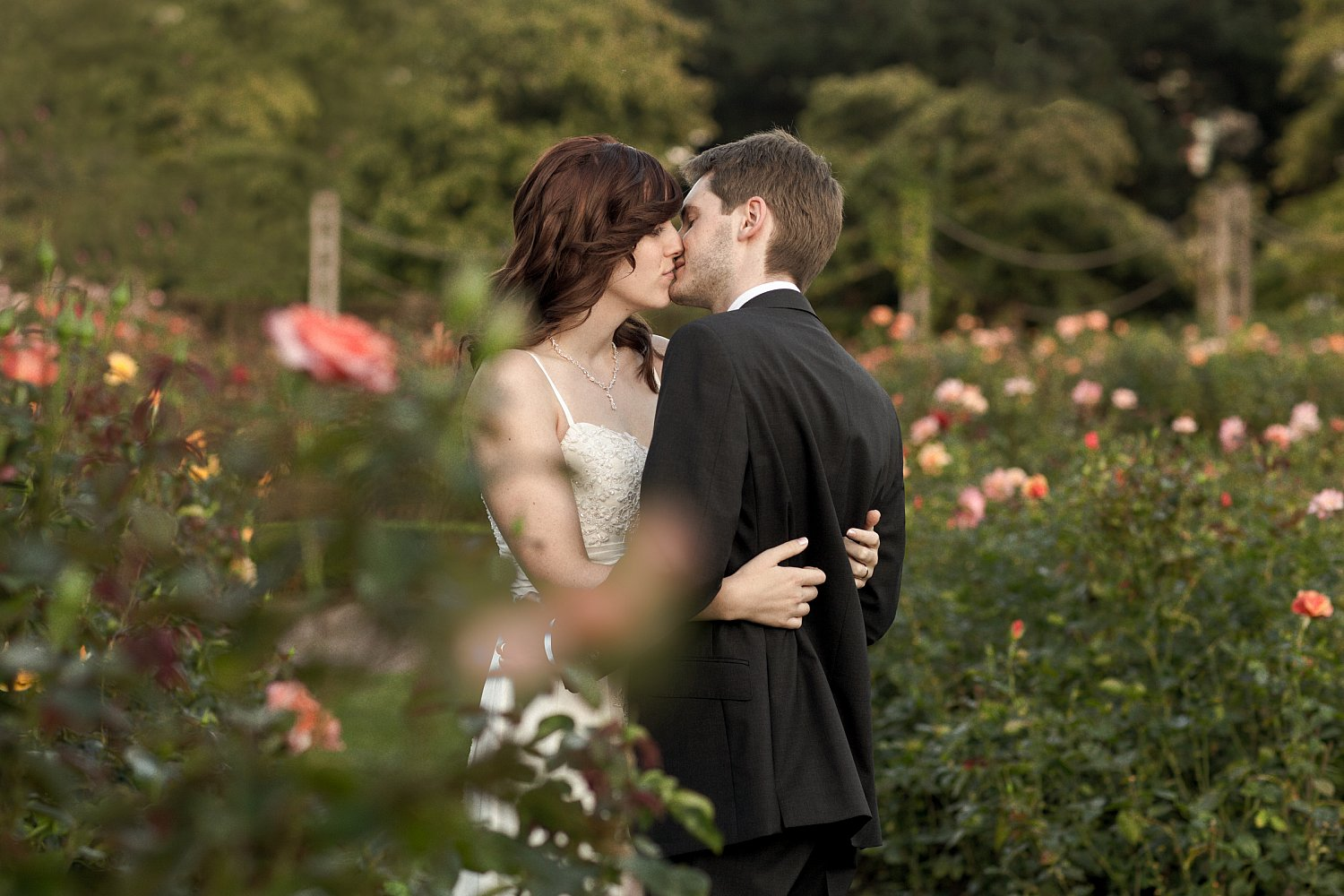 lovers-embrace-rose-garden-regents-park-london-mat-smith-photography_.jpg